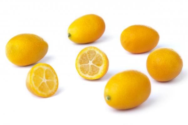 kumquat_fruit.jpg