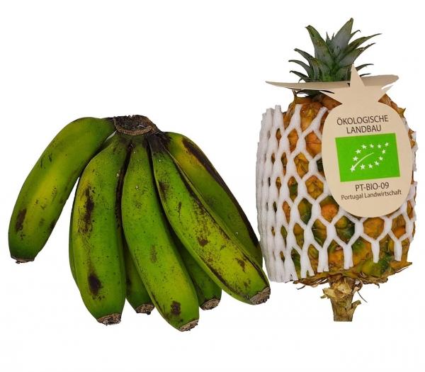 Azoren_Ananas_und_Banane.jpg