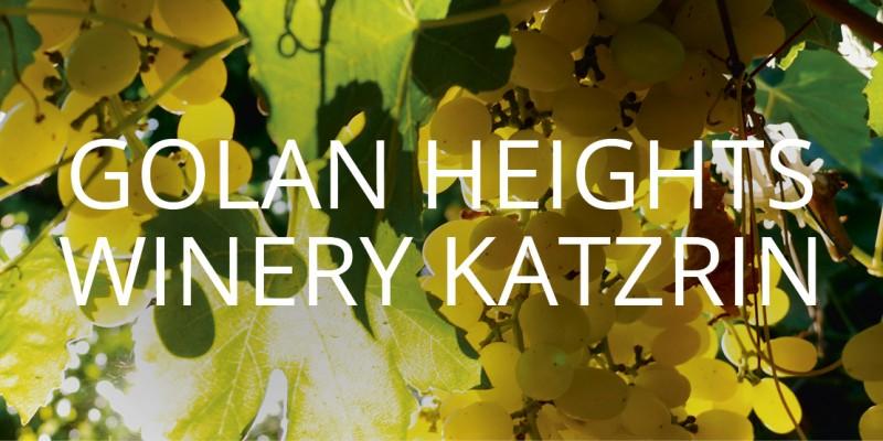 media/image/golan-heights-winery-katzrin-mobile.jpg