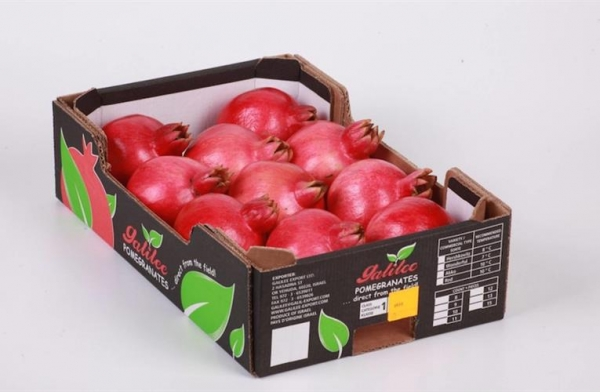 galilee_export_pomegranate_akko_5_980x634.jpg