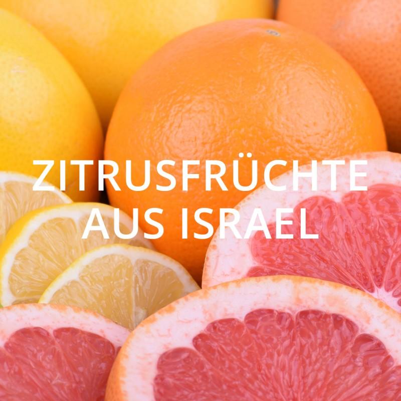ZITRUSFRÜCHTE AUS ISRAEL