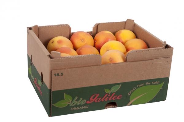 Red_Grapefruit_Organic_Box_1_IMG_0178.jpg