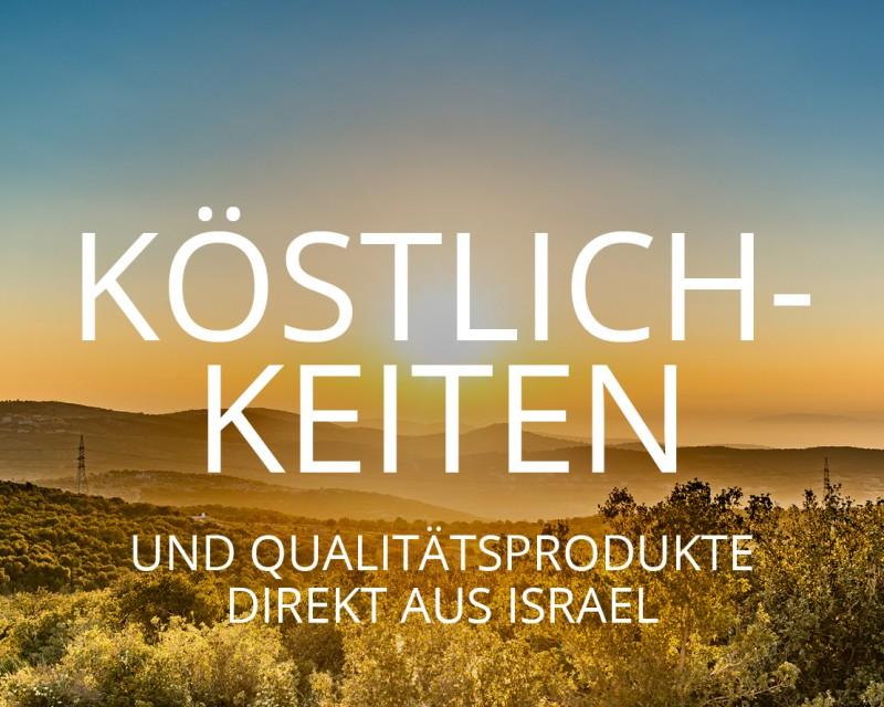 media/image/israel-welt-mobile.jpg